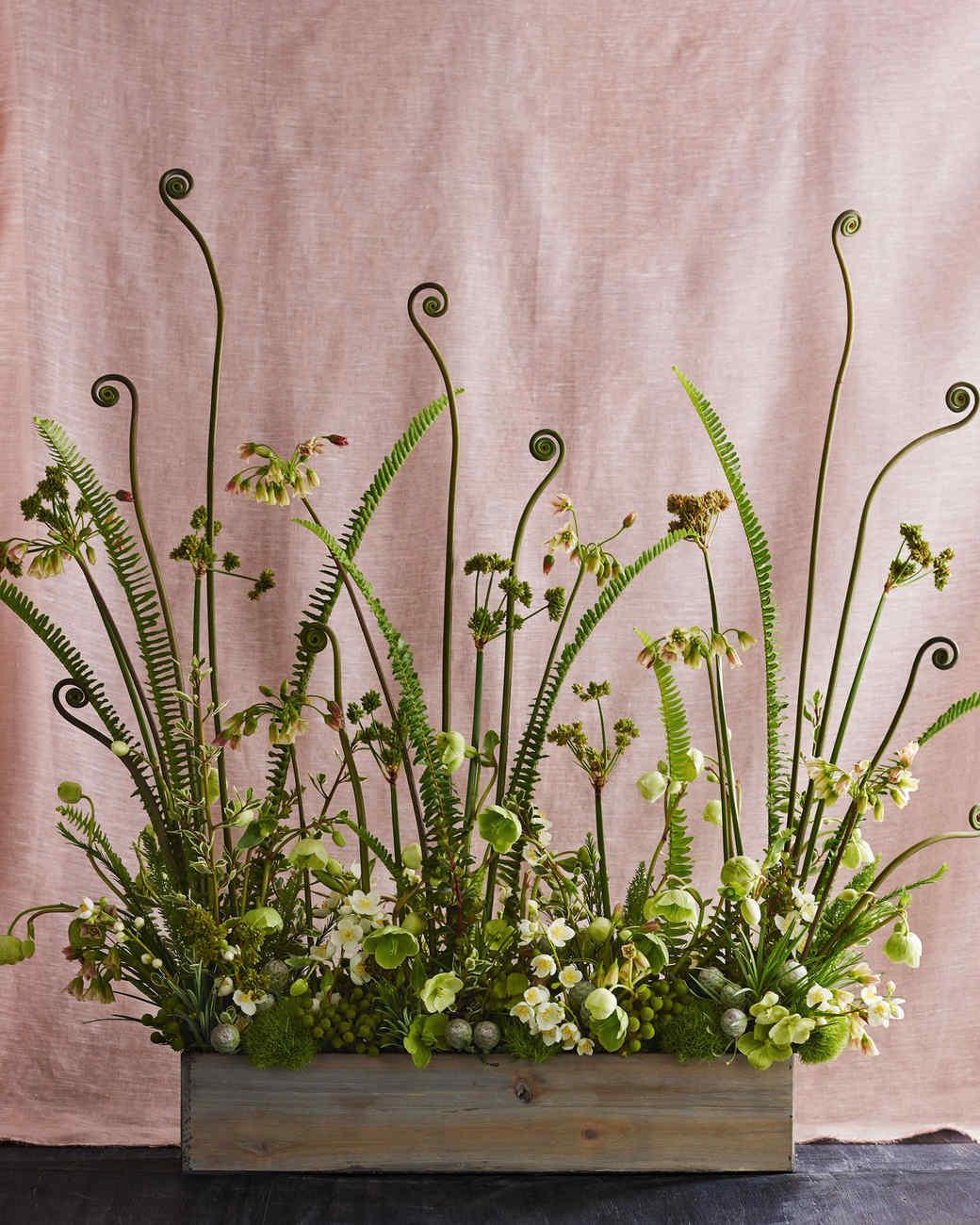 dandelion-ranch-clover-chadwick-woodland-187r-flat-d112251.jpg