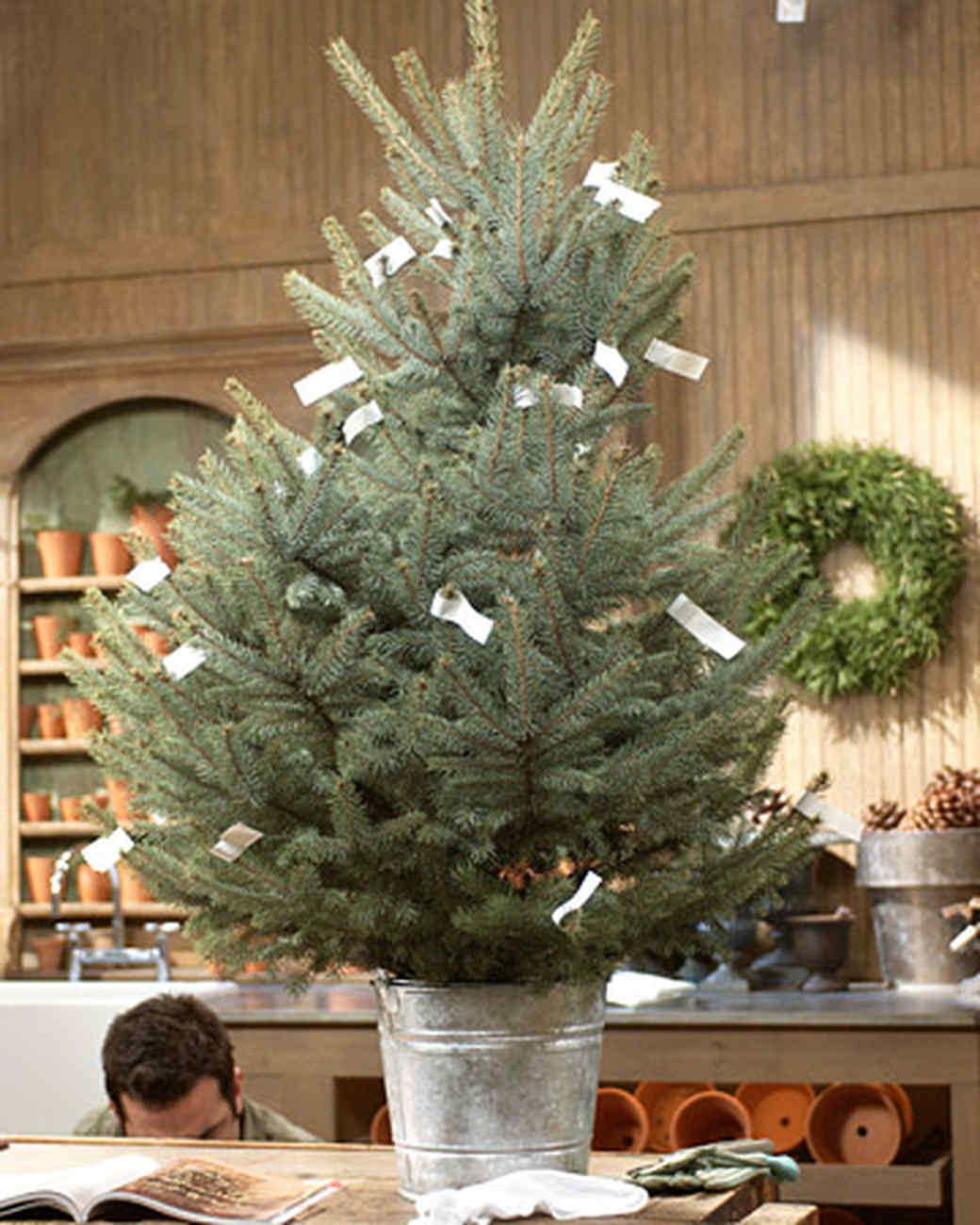 Shaping and Decorating a Tabletop Tree with Eric | Martha ...
