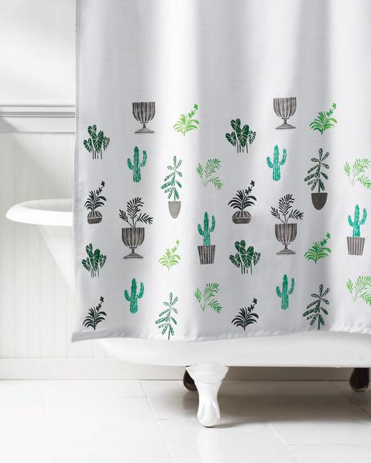 ms-content-stencil-cacti