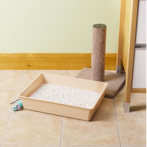 cat-litter-box.jpg