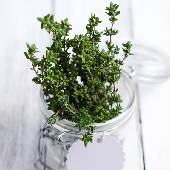 thyme-glass-jar.jpg
