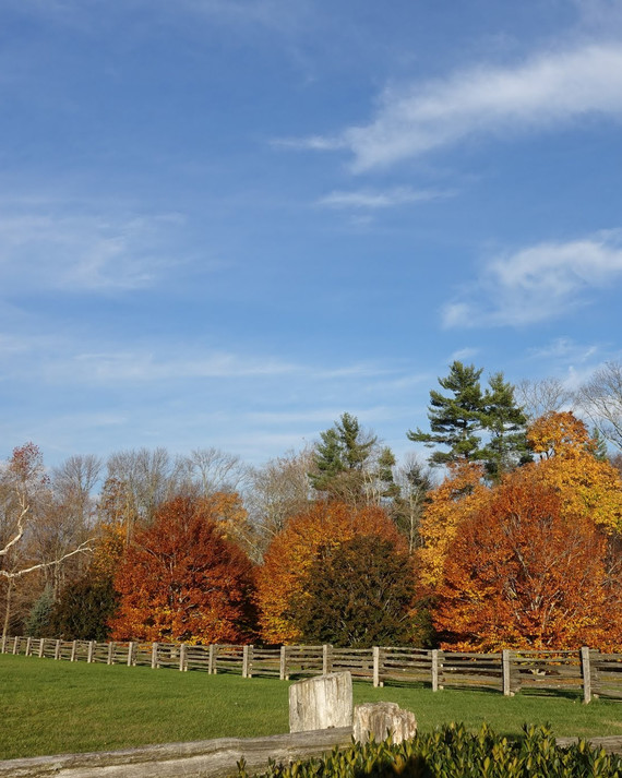 fall-foliage-farm.jpg