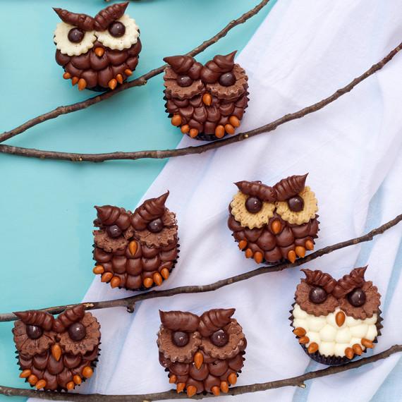 owl-cupcakes-1015.jpg (skyword:195054)