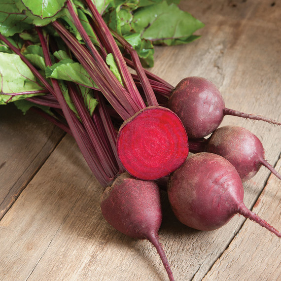 beets-red-ace-0328