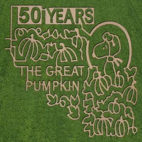 """Visit one of these """"Peanuts"""" inspired corn mazes at a farm near you."""