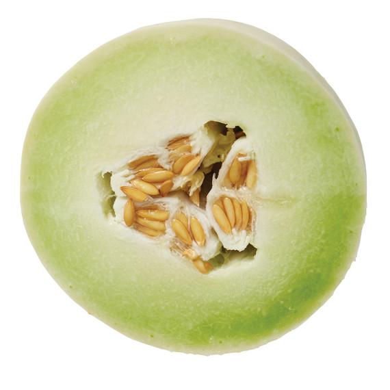 melons-052-d113014_l.jpg