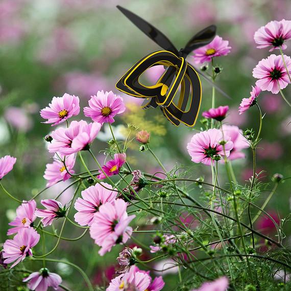 bee drone flowers