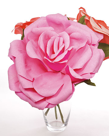 4093_020409_largeflower.jpg