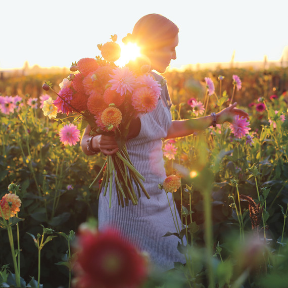 picking-flowers-s111606.jpg