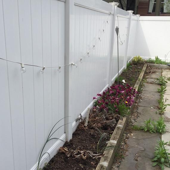 garden-border-before-0616.jpg (skyword:296478)