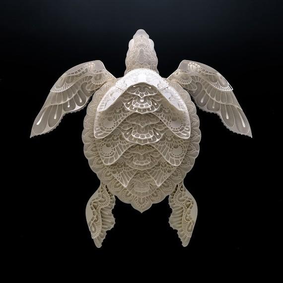 turtle papercut