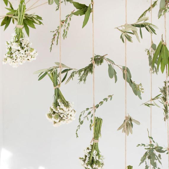 hanging-plants-jenni-kayne.jpg