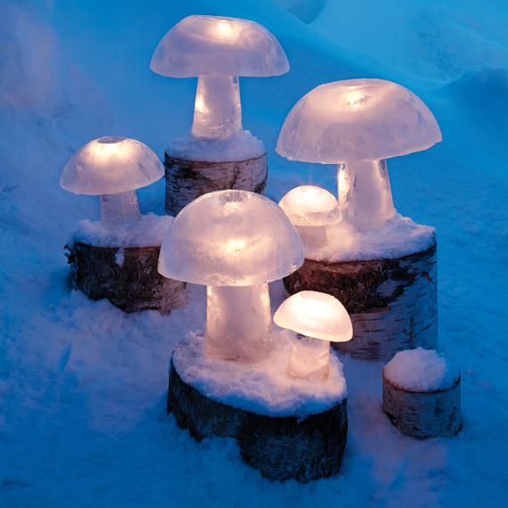 ice-mushroom-0048-ld111141.jpg