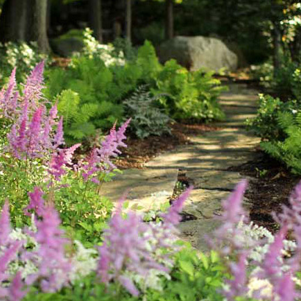 landscaping trends garden path