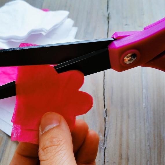 cherry-blossom-cutting-0315