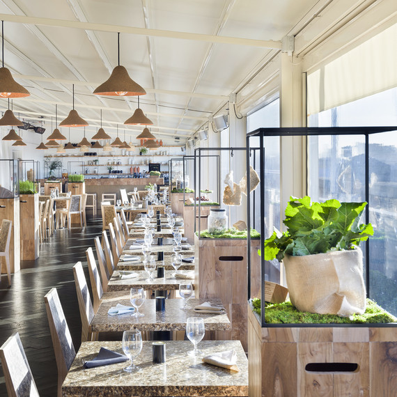 From Artichoke Chairs To Seaweed Lamps This Restaurant Is