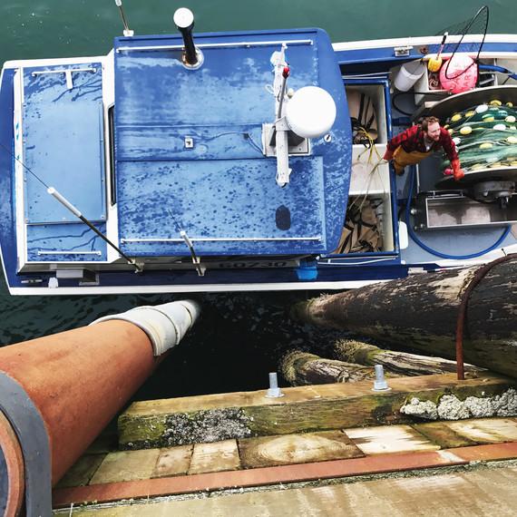 boat dock drifters fish