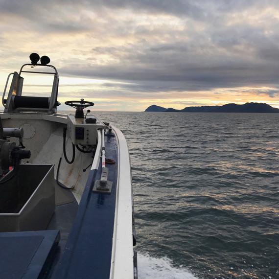 drifters fish commuting in boat