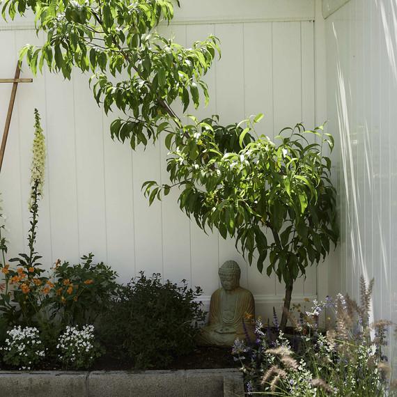 garden-buddha-peachtree-0616.jpg (skyword:296423)