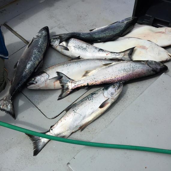 sarah-carey-alaska-fish-0915.jpg