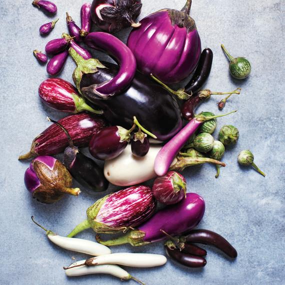 eggplant-glossary-077-d110486.jpg