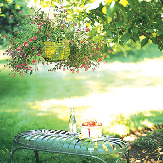 landscaping trends bench