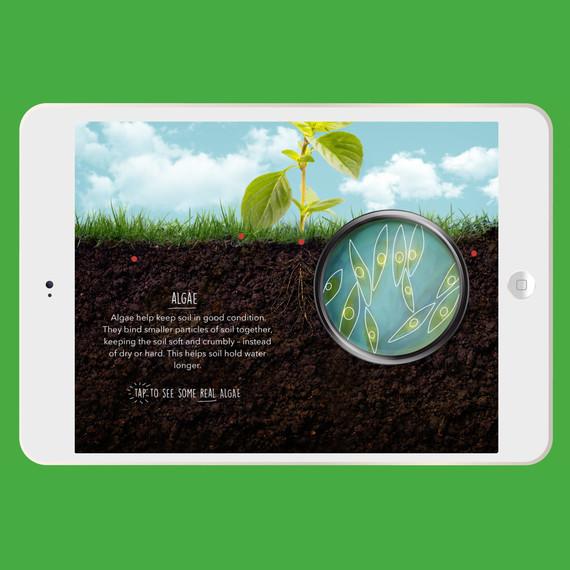 whole kids app soil