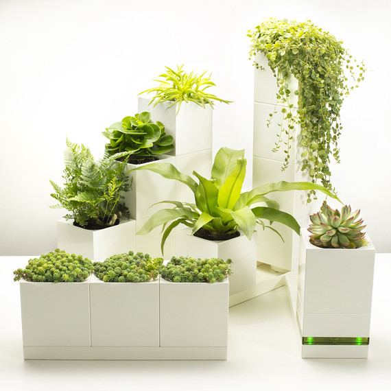 Lego inspired planters are a smart gardening solution for - Planters for small spaces ...