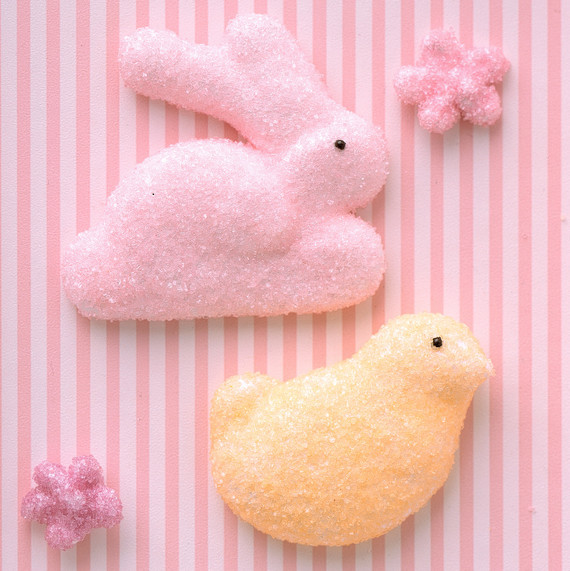 marshmallow rabbit bird stripe background