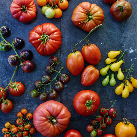 07-tomato-glossary-68582-d112503.jpg