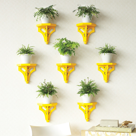 plant-brackets-yellow-0911mld107506.jpg