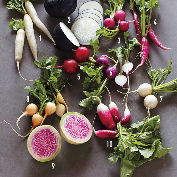 numbered-radishes-mld110362-021-0315.jpg