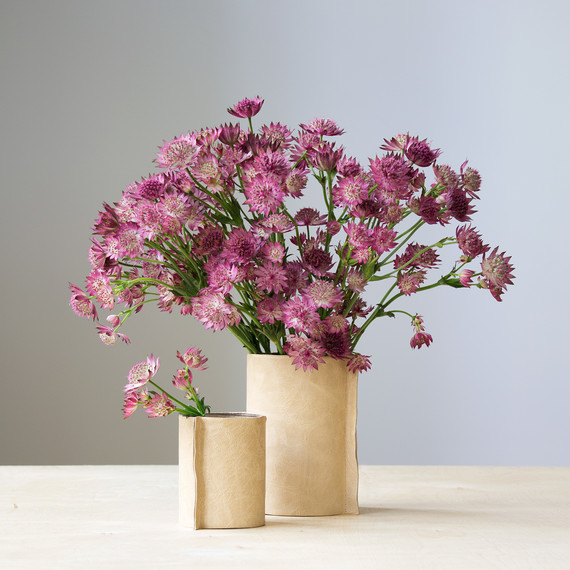 david_stark_design_diy_leather_vase_w_flowers5.jpg (skyword:322879)