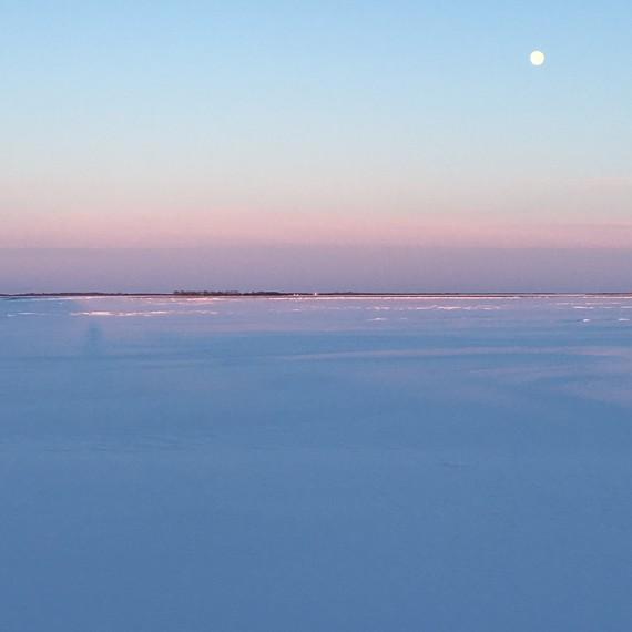 far-north-distillery-lands-winter-light-1116