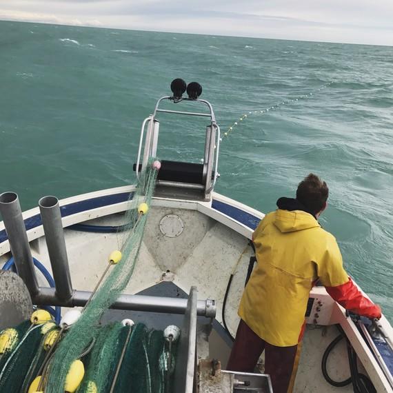 fishing gulf of alaska