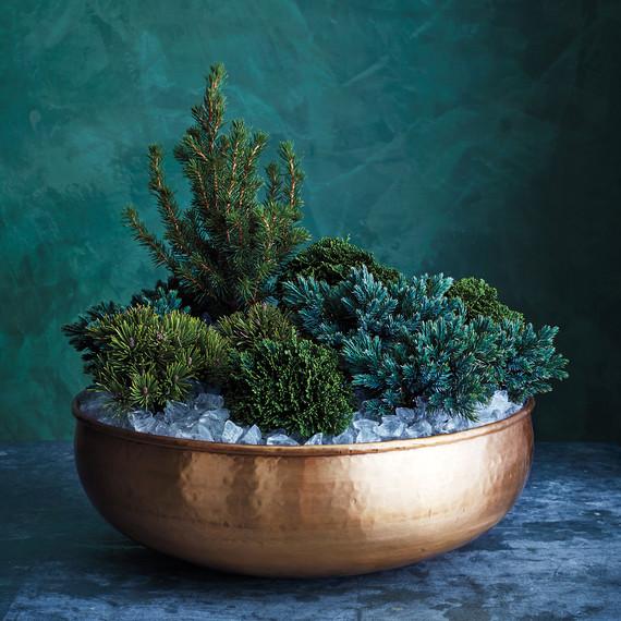 mini-evergreens-brass-bowl-012-d111854.jpg