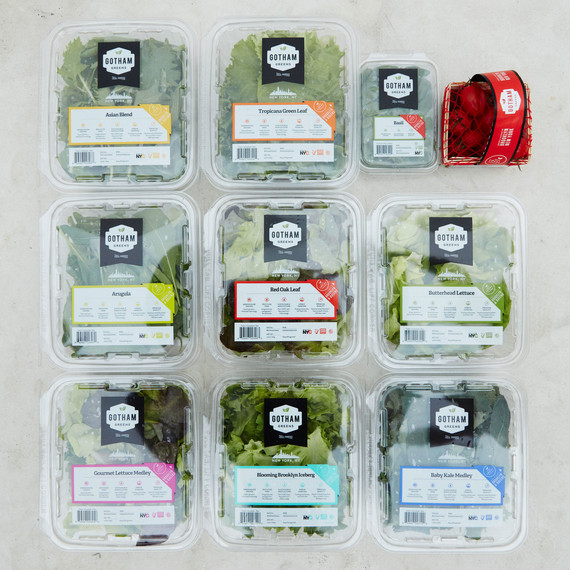 gotham-greens-overhead-product-packing-886-d112691.jpg