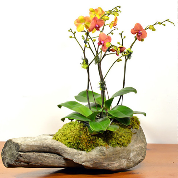 Flower Arrangement Using Driftwood: 10 Floral Arrangements For Any Time Of Year