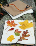 Kids' Nature Crafts