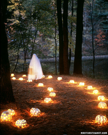 white pumpkin path