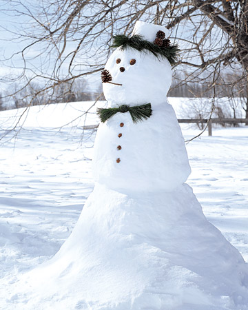Stylish Martha Stewart Snowgentleman