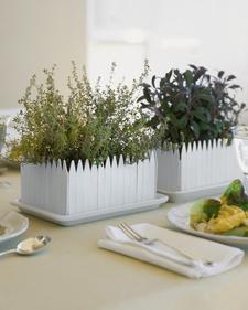 Herb Garden Centerpiece Step by Step DIY Craft How To