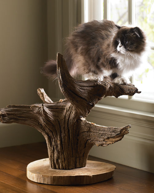 Cat Tree Step by Step DIY Craft How Tos And