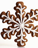 Iced, Decorated, and Shaped Cookie Recipes
