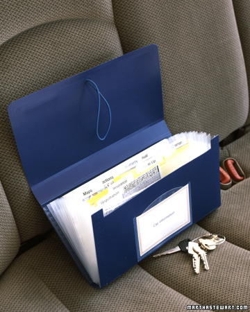 pass the caffeine the car challenge With paperwork organizer for car