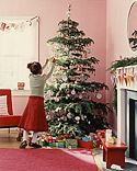 Kids' Christmas Trees