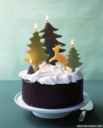 Chocolate Cake with Snowy Meringue