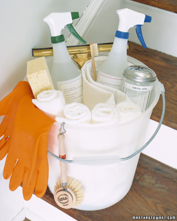 Kitchen-Cleaning Kit