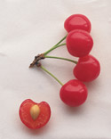 Sour Cherry Recipes