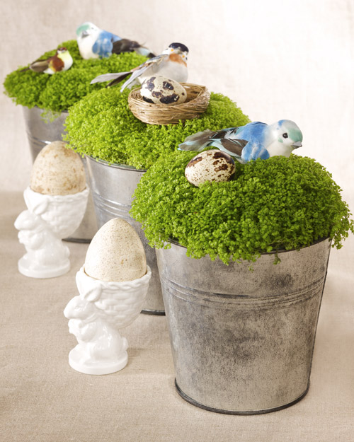 Irish Moss Centerpiece amp Video Martha Stewart